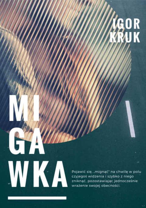 migawka_front